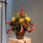 Our 2014 submission for Art in Bloom